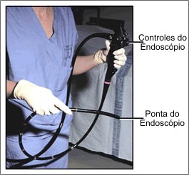 ibmed-endoscopia-digestiva-1